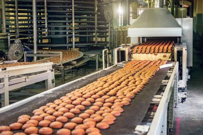 5 thông số vệ sinh và an toàn cho băng tải công nghiệp thực phẩm