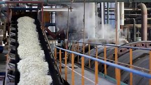 Băng chuyền công nghiệp và những thông tin cần thiết về băng chuyền công nghiệp