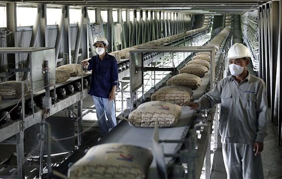 Băng tải bao xi măng chuyên dùng trong lĩnh vực sản xuất