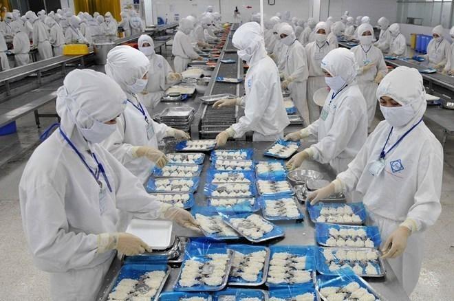 Băng tải hàng tạo nên bước chuyển mình cho ngành thủy sản Việt Nam