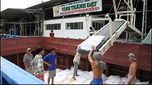 Băng tải lúa gạo tăng hiệu suất vận chuyển trong công nghiệp