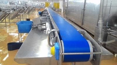 Giới thiệu về các loại băng chuyền tại Việt Thống Hưng Thịnh