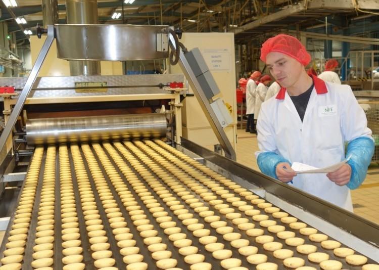 Một số loại băng tải cơ khí phổ biến trong nhà máy thực phẩm