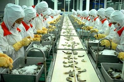 Tầm quan trọng của hệ thống băng tải trong ngành công nghiệp thực phẩm