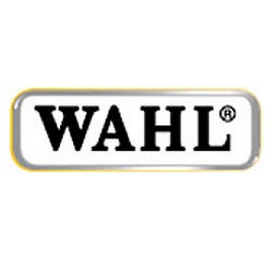 Thi công băng tải ngang cho công ty WAHL Việt Nam