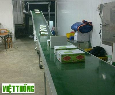 Ứng dụng băng tải đếm sản phẩm vào nhiều lĩnh vực hiệu quả